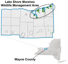Lake Shore Marshes WMA locator map