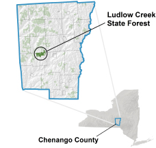 Ludlow Creek State Forest locator map
