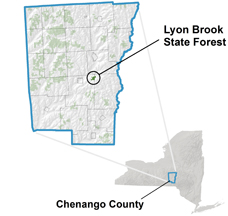 Lyon Brook State Forest locator map