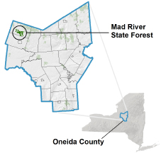 Mad River State Forest locator map