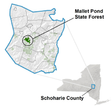 Mallet Pond State Forest locator map