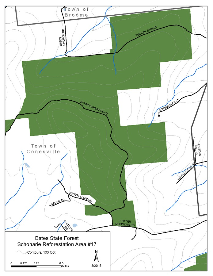 Bates State Forest Map