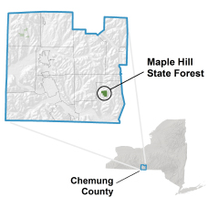 Maple Hill State Forest Locator