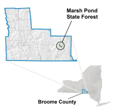 Marsh Pond State Forest locator map