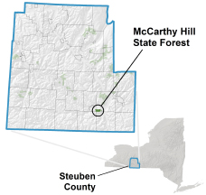 McCarthy Hill State Forest locator map