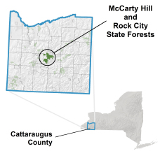 McCarty Hill State Forest locator map