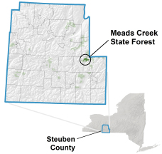 Meads Creek State Forest locator map