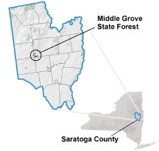 Middle Grove State Forest locator map