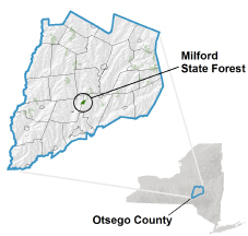 Milford State Forest locator map