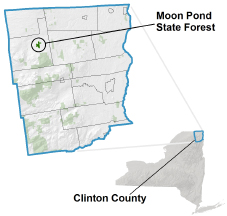 Moon Pond State Forest locator map