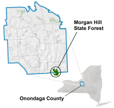 Morgan Hill State Forest locator map