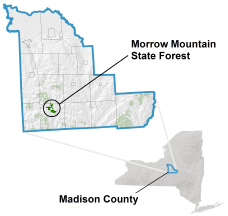 Morrow Mountain State Forest locator map