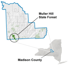 Muller Hill State Forest locator map