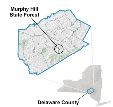 Murphy Hill State Forest locator map