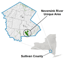 Neversink River Unique Area locator map
