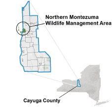 Northern Montezuma WMA locator map