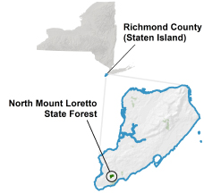 North Mt. Loretto State Forest locator map