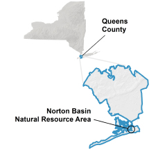Norton Basin locator map