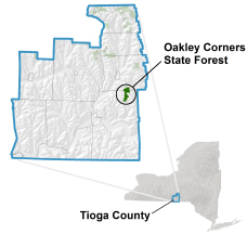 Oakley Corners State Forest locator map