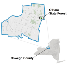 O'Hara State Forest locator map