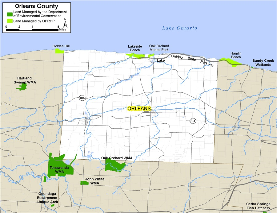 Map of Orleans County showing State owned lands open to public recreation
