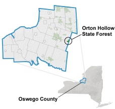 Orton Hollow State Forest locator map