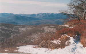view of the Catskills from Overlook Mountain