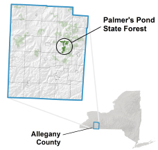 Palmer's Pond State Forest Locator Map