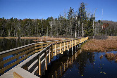 picture of accessible boardwalk across a wetland