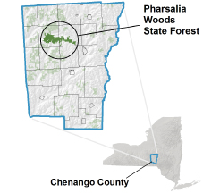 Pharsalia Woods State Forest locator map