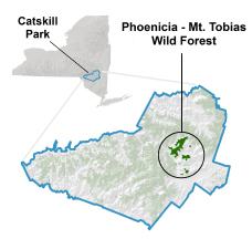 Locator map for Phoenicia Wild Forest