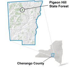 Pigeon Hill State Forest locator map