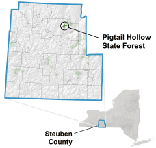 Pigtail Hollow State Forest locator map
