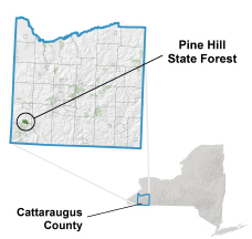 Pine Hill State Forest locator