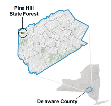 Pine Hill State Forest locator map