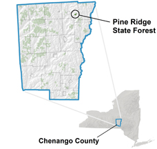 Pine Ridge State Forest locator map