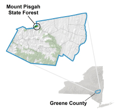 Mount Pisgah State Forest locator map