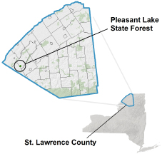 Pleasant Lake State Forest locator map