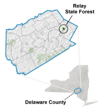 Relay State Forest locator map