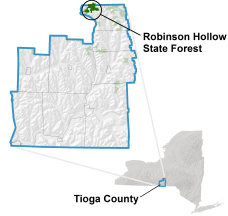 Robinson Hollow State Forest locator map