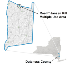 Roeliff Jansen Kill locator map