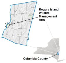 Rogers Island Wildlife Management Area - NYS Dept  of Environmental
