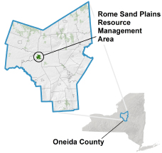 Rome Sand Plains locator map