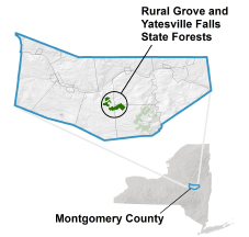 Rural Grove State Forest locator map