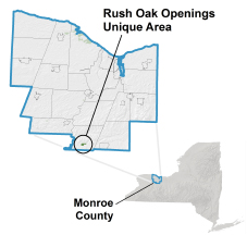 Rush Oak Openings locator map