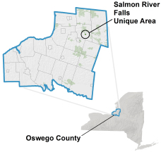 Salmon River Falls Unique Area locator map
