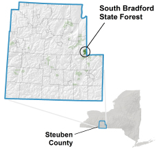 South Bradford State Forest locator map