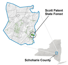 Scott Patent State Forest locator map