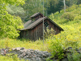 A rustic building in a neadow in the forest