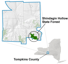 Shindagin Hollow State Forest locator map